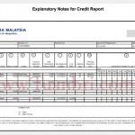 CCRIS Report